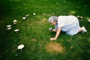 Betty & mushroom circle copy